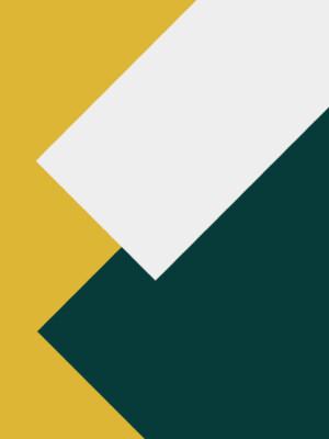 Annual Report  2015 – 2017