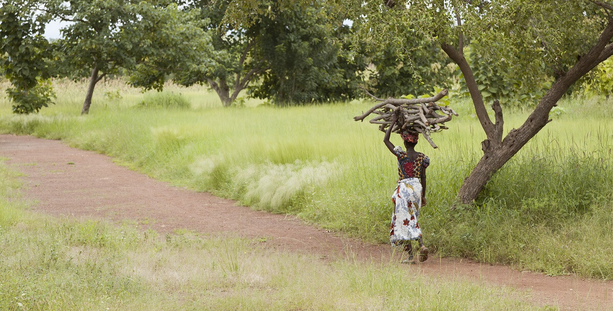 Kere Foundation Environment@francis Kere